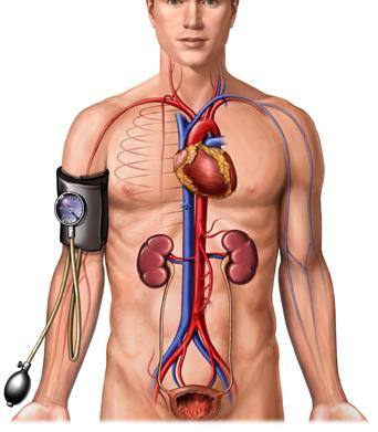 hogyan lehet gyógyítani a magas vérnyomást népi módszerekkel parkinsonizmus és magas vérnyomás